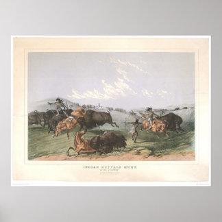 """Caza del búfalo indio: """"Cuartos cercanos"""" (0743A) Póster"""