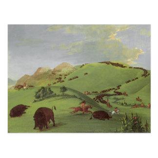 Caza del búfalo por Catlin, nativos americanos del Postal