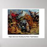 Caza del tigre y del león de Peter Paul Rubens Póster