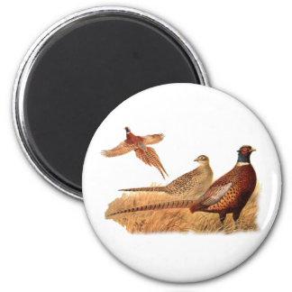 Caza evasiva del pájaro del faisán imán redondo 5 cm