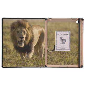 Caza masculina del león iPad fundas