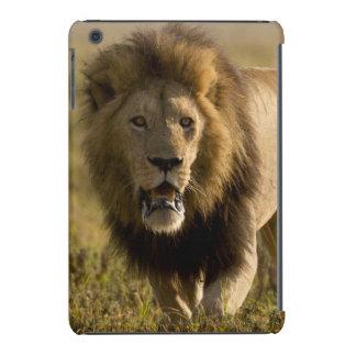 Caza masculina del león funda de iPad mini