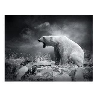 Cazador blanco del oso polar en el hielo en agua postales