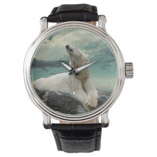 Cazador blanco del oso polar en roca reloj de mano