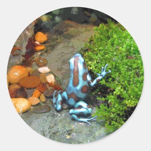 CB azules plateados de la rana del dardo Pegatina Redonda