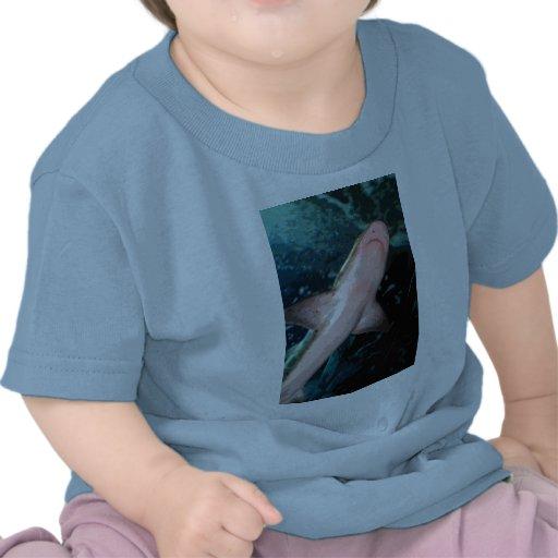 CB del tiburón de NJ Camisetas