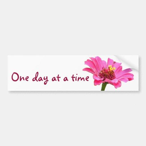 CB un pegatina rosado de la flor del zinnia del dí Pegatina Para Auto