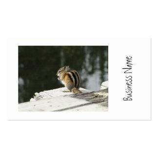 CBAT Chipmunk Bathtime Business Card Templates