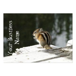 CBAT Chipmunk Bathtime Business Cards