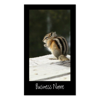 CBAT Chipmunk Bathtime Business Card Template