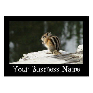 CBAT Chipmunk Bathtime Business Card