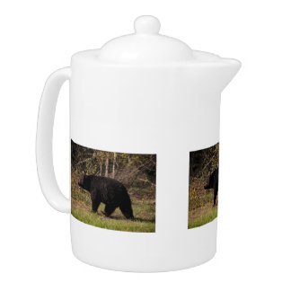 CBB Chubby Black Bear