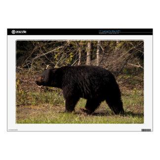 "CBB Chubby Black Bear 17"" Laptop Decal"
