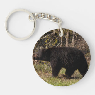 CBB Chubby Black Bear Acrylic Key Chains
