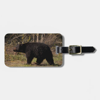CBB Chubby Black Bear Bag Tag
