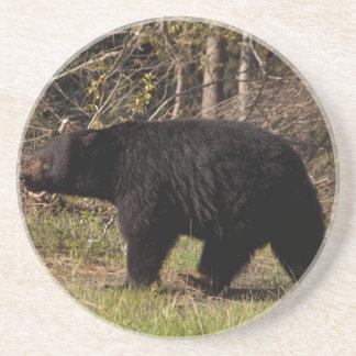 CBB Chubby Black Bear Beverage Coaster