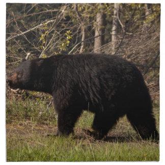 CBB Chubby Black Bear Cloth Napkin