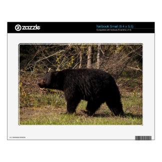 CBB Chubby Black Bear Decals For Netbooks