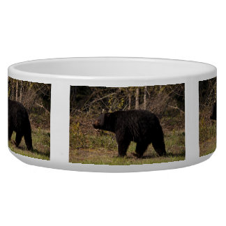 CBB Chubby Black Bear Dog Water Bowl