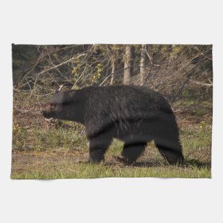 CBB Chubby Black Bear Hand Towel