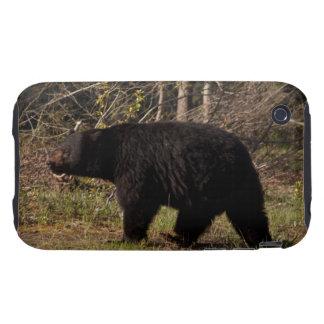 CBB Chubby Black Bear iPhone 3 Tough Covers