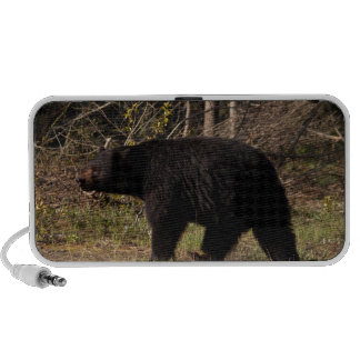 CBB Chubby Black Bear Mini Speakers