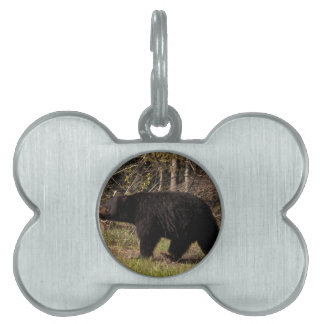 CBB Chubby Black Bear Pet Tags