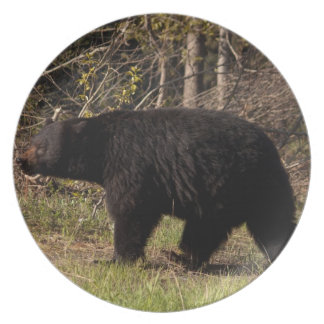 CBB Chubby Black Bear Plates