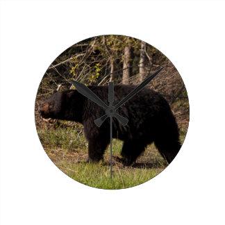CBB Chubby Black Bear Round Wall Clocks