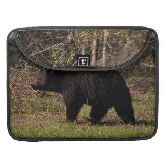 CBB Chubby Black Bear Sleeve For MacBook Pro
