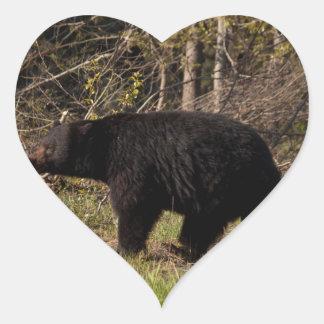 CBB Chubby Black Bear Sticker