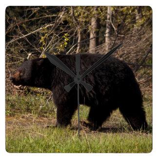 CBB Chubby Black Bear Wallclock