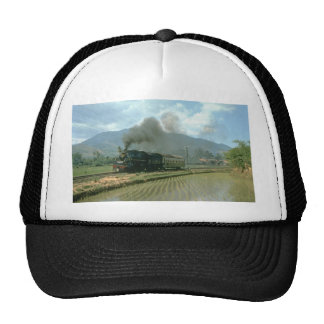 CC5003 passes paddy fields with its light load for Hat
