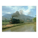CC5003 passes paddy fields with its light load for Post Card