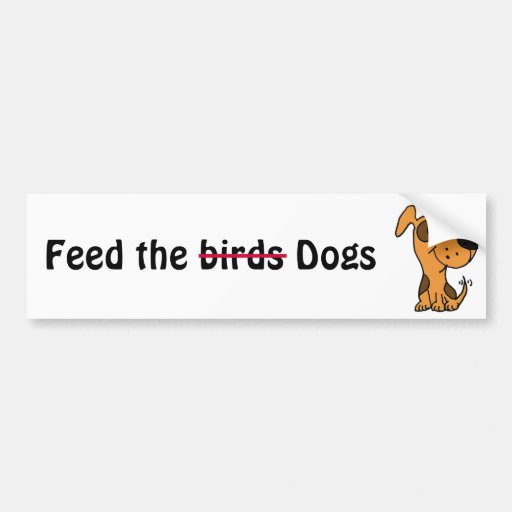 CC- Feed the birds, I mean dogs bumper sticker