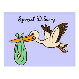 CC- Fun Stork Special  Delivery Postcards