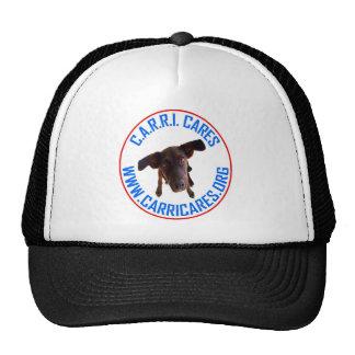CC LOGO 2 TRUCKER HAT