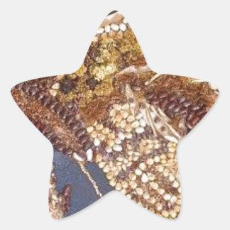 cccccc.PNG Pegatina En Forma De Estrella
