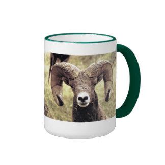 # CCP - No 409,MI - Bighorn Sheep Ram . Ringer Mug