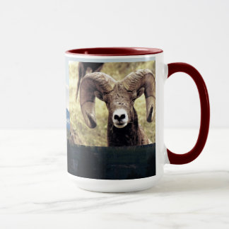 CCP - No 422,Mt, Bighorn Sheep Ram #6  Montana Mug