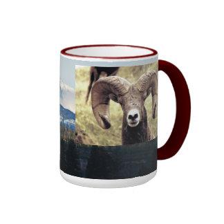 CCP - No 422,Mt, Bighorn Sheep Ram #6  Montana Ringer Mug