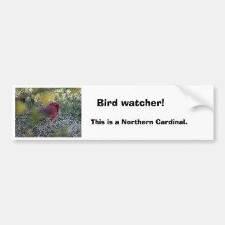¡cd2 012, vigilante de pájaro! , Esto es una tarje Pegatina Para Auto