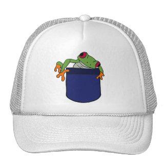 CD- Cartoon Frog in a Pocket Hat