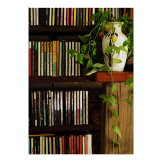 CD Shelves Poster