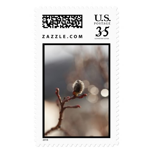 CDR Catkin Dream Postage Stamps