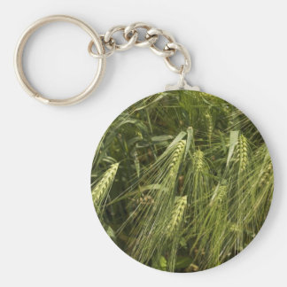 cebada verde llavero redondo tipo pin