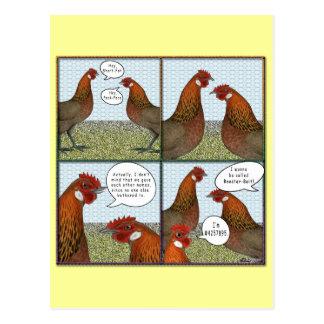 Cebo del gallo tarjetas postales