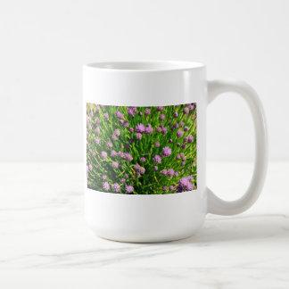 Cebolla de la ensalada que florece con los flores taza