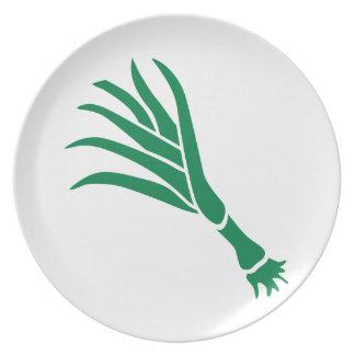 Cebolla verde plato de comida