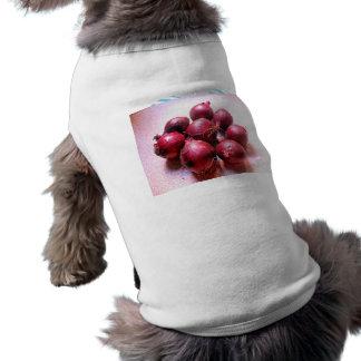 Cebollas frescas ropa para mascota